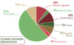 Gen-Claims-Illness-Category-Pie-Chart.jp