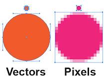 vectore.jpg