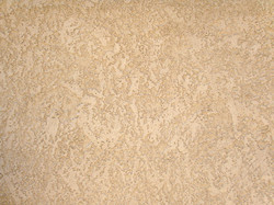 Light Lace Texture.jpg