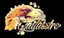 LOGO GIALLASTRO 2