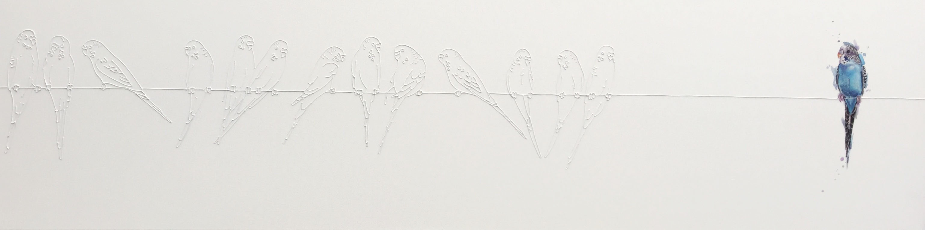 Budgies on a wire