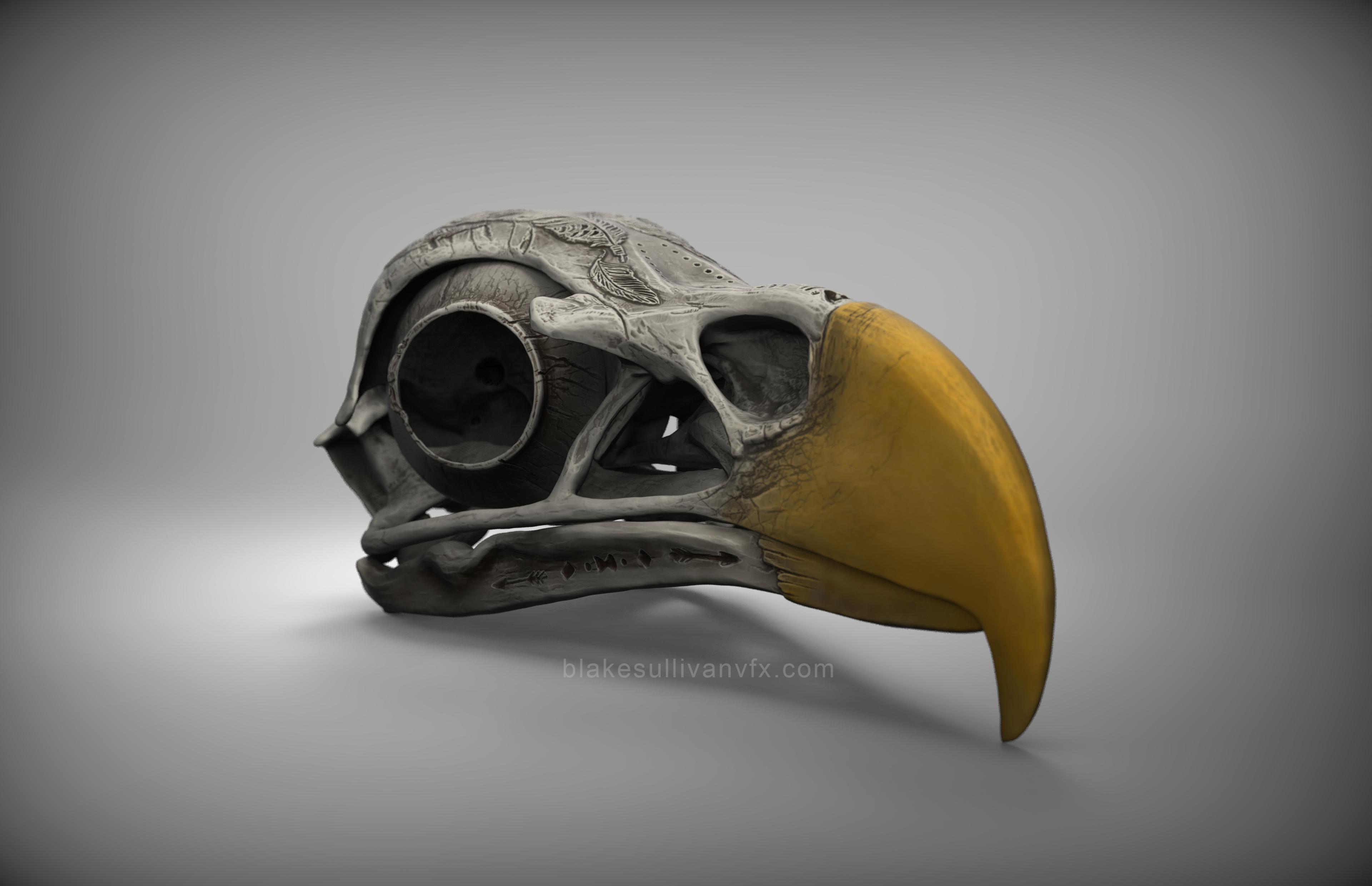 birdSkull_3_4th_v02_brand