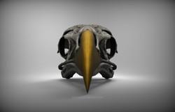 birdSkull_front_v01_branded