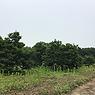 土地付き太陽光発電_熊本益城471.png