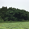 土地付き太陽光発電_熊本益城宮園.png