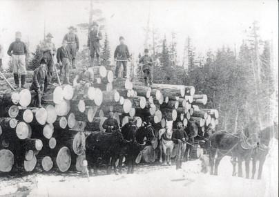 Haliburton log skidding PAC c18603 (Boyd right side)