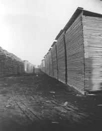 lumber stacked