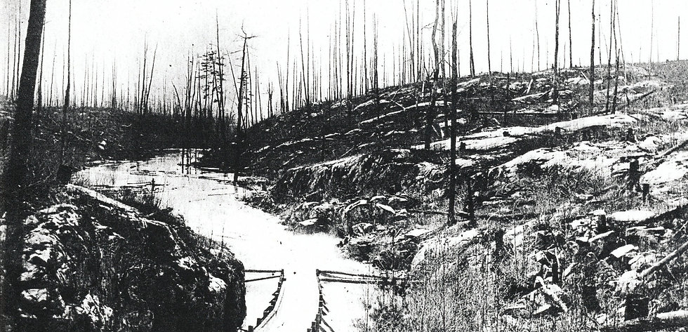 Haliburton timber slide 1880s PAC c27178_edited.jpg