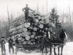 Haliburton brag load 1880s PAC Boyd File.jpg