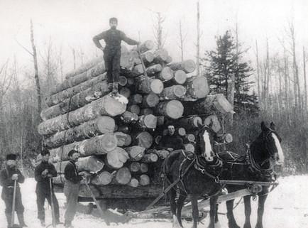 Haliburton brag load 1880s PAC Boyd File