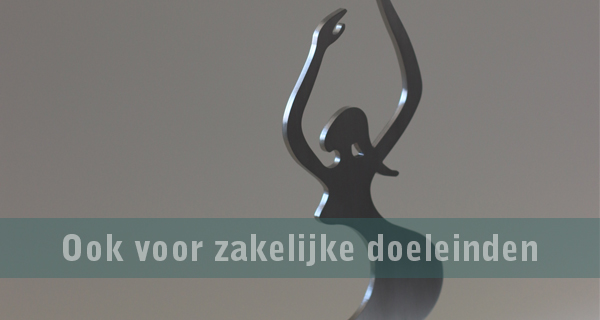 Webwinkel banner 01