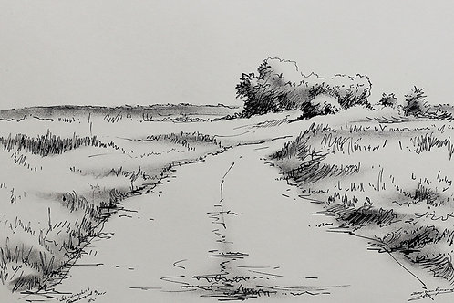 Waterwingebied, Egmond aan Zee
