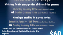 Performing Arts Programs - Audition Workshops 2019