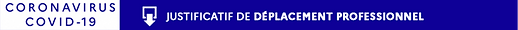 coronavirusprofessionnel.png