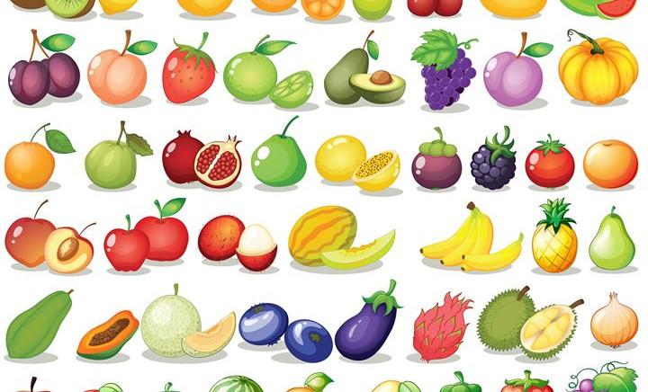 Fruit set__Illustration of a set of frui