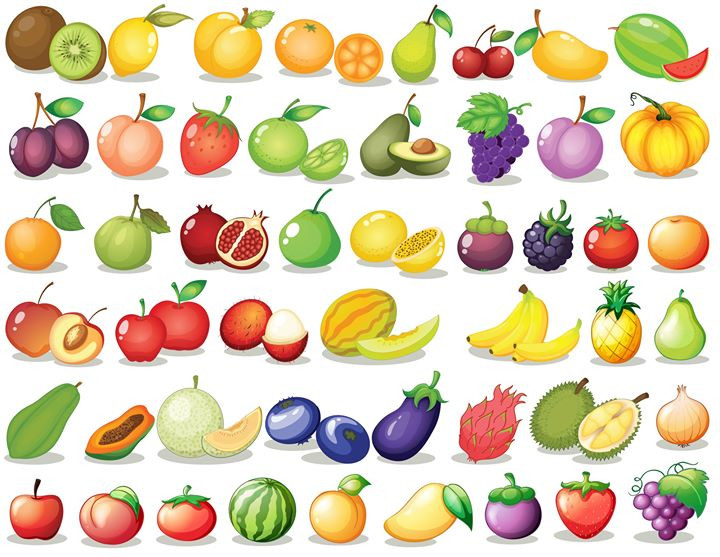 Fruit set__Illustration of a set of frui