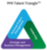 PMI Talent Triangle Logo