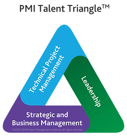 PMI Talent Triangle Logo