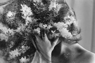 """ Evergrowing Wonder """