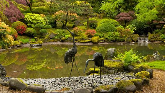 Portland-Japanese-Garden-20678.jpg