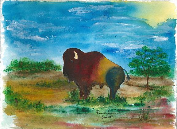 Buffalo # 5