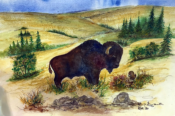 Buffalo # 1