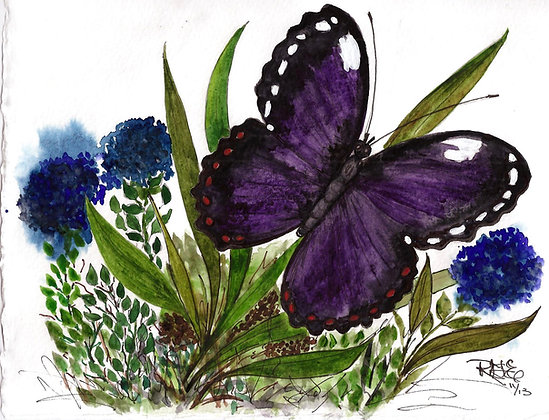 Midnight Flight Butterfly