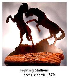 FightingStallions 79.jpg