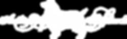 AAS Logo WATERMARK White.png