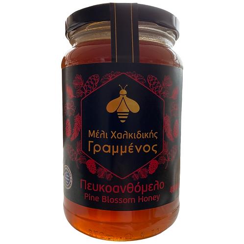 Pine Blossom Greek Honey 450g