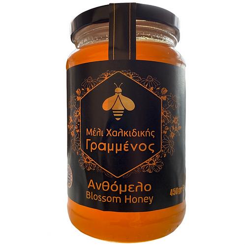 Blossom Greek Honey 450g