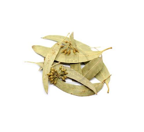 Eucalyptus Leaves Tea 30g