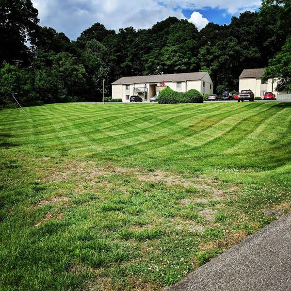 Lawn Mowing Stripes in Lynchburg