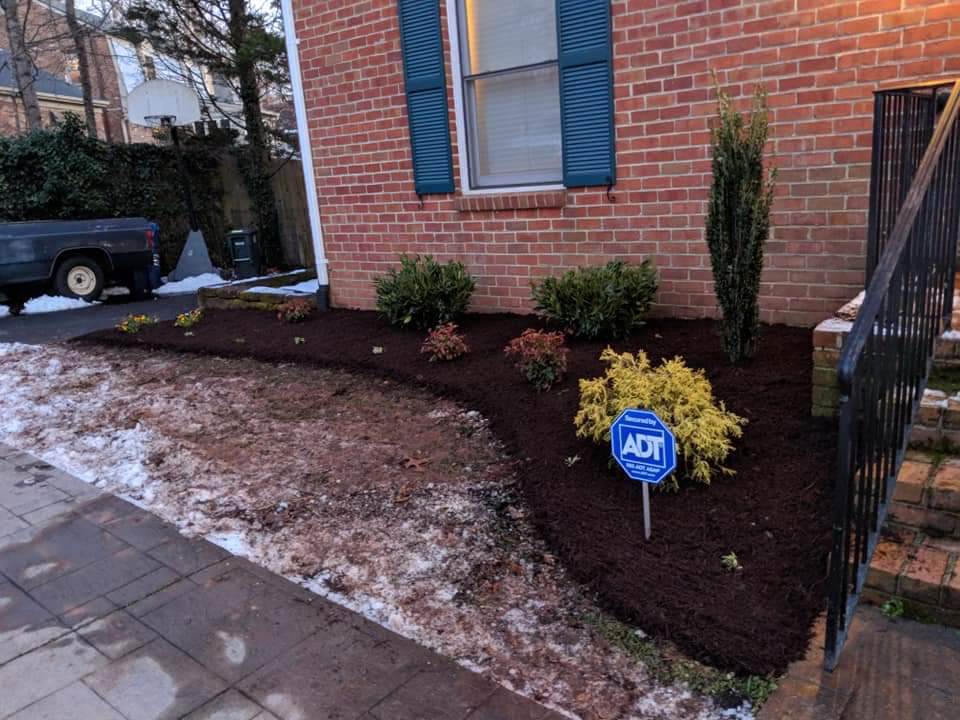 Winter Landscaping