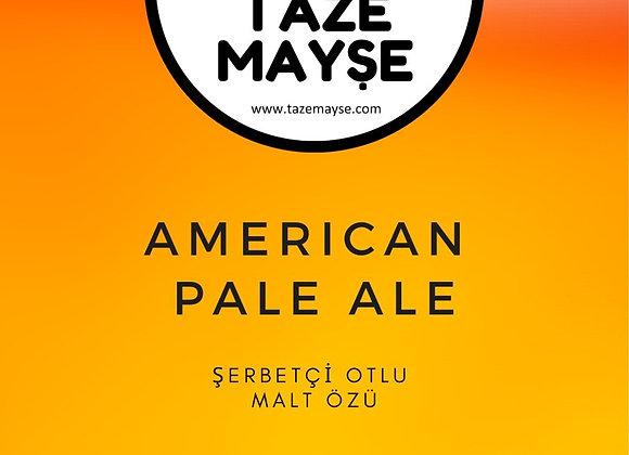 Amerikan Pale Ale Şerbetçiotlu Malt kiti - TazeMayşe