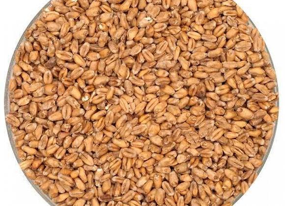 Thracian Buğday Maltı 5kg Kırılmış - Kediköy
