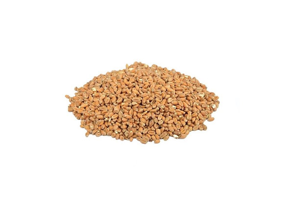 Thracian Buğday Maltı - 25 kg - Vinomarket