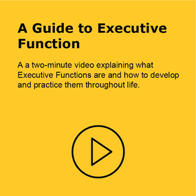 A Guide to Executive Function