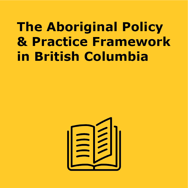 Guidelines Aboriginal Policy and Practice Guidelines.png