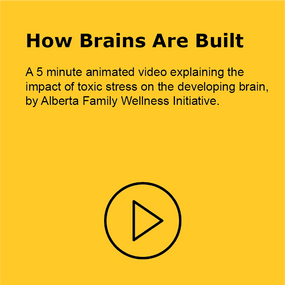 How Brains are Build
