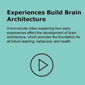 Experience Build Brain Architecture