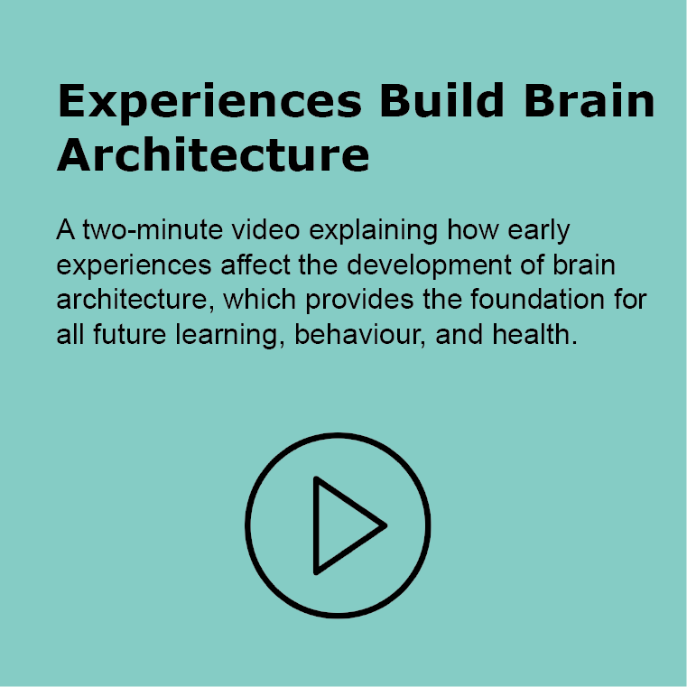Experience Build Brain Architecture