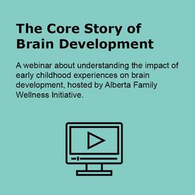 The core story of brain development