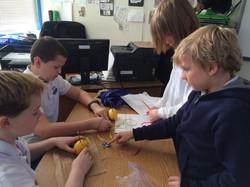 Grade 5-6 Science