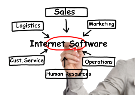 Online Software Business Consulting