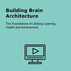 Building Brain Architecture