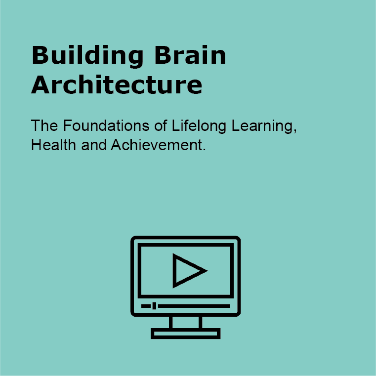 Building Brain Architecture