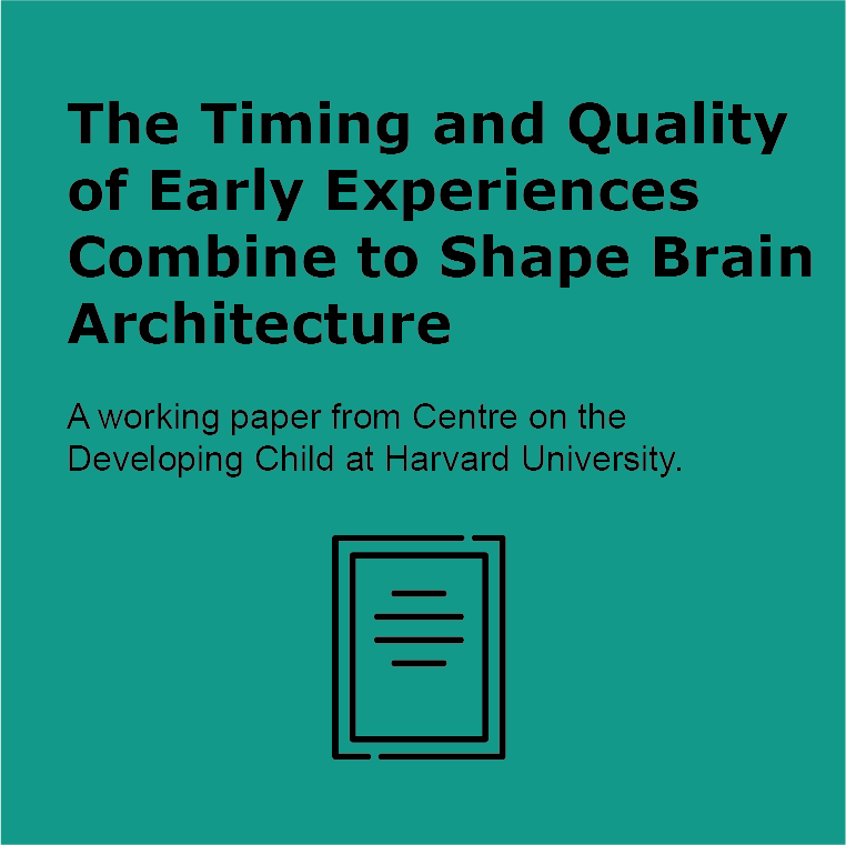 the timining and quality of early experiences combine to shape brain architecture