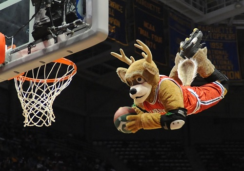 NBA Mascots: Heroes of the Hardcourt