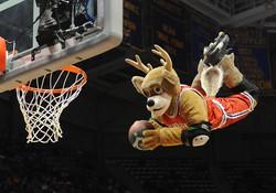 NBA Mascots: Heroes of the Hardcourt